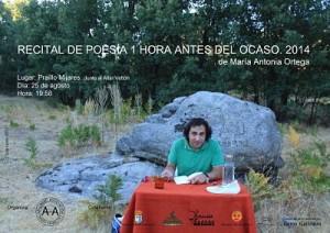 Cartel poesía 2014